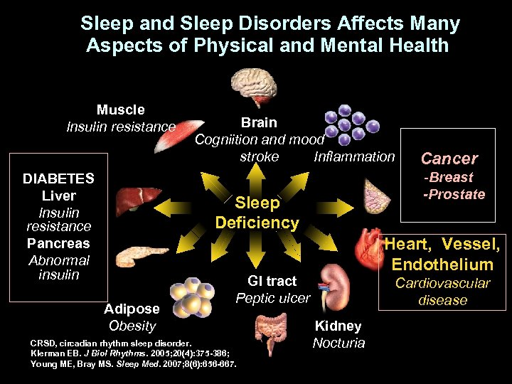 Sleep and Sleep Disorders Affects Many Aspects of Physical and Mental Health Muscle Insulin