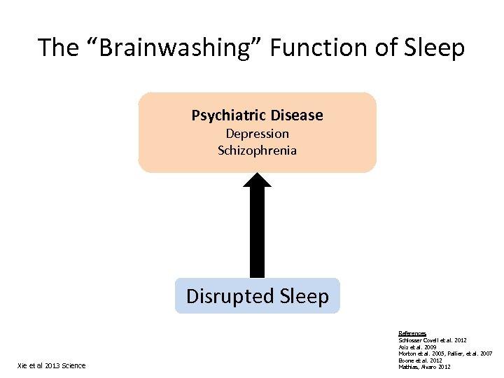 "The ""Brainwashing"" Function of Sleep Psychiatric Disease Depression Schizophrenia Disrupted Sleep Xie et al"