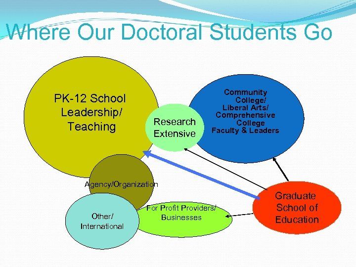 Where Our Doctoral Students Go PK-12 School Leadership/ Teaching Research Extensive Community College/ Liberal