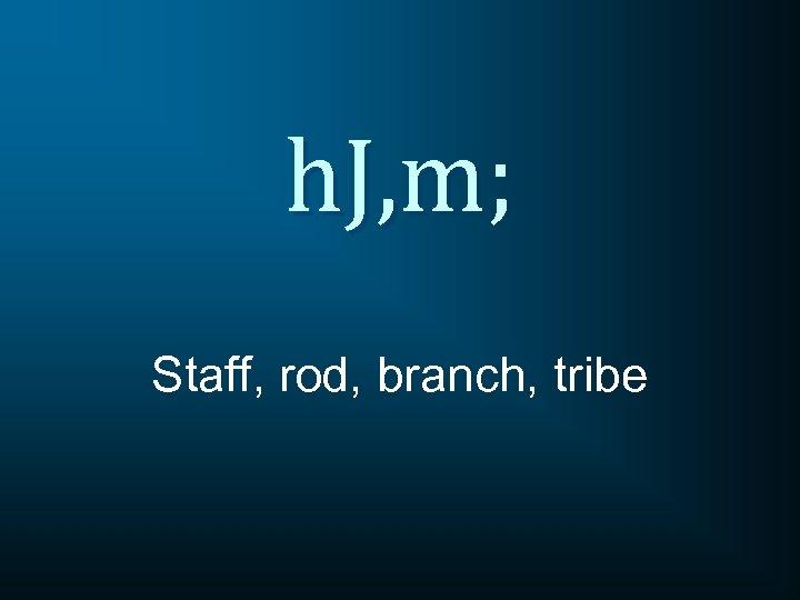 h. J, m; Staff, rod, branch, tribe