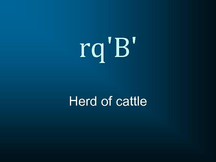 rq'B' Herd of cattle