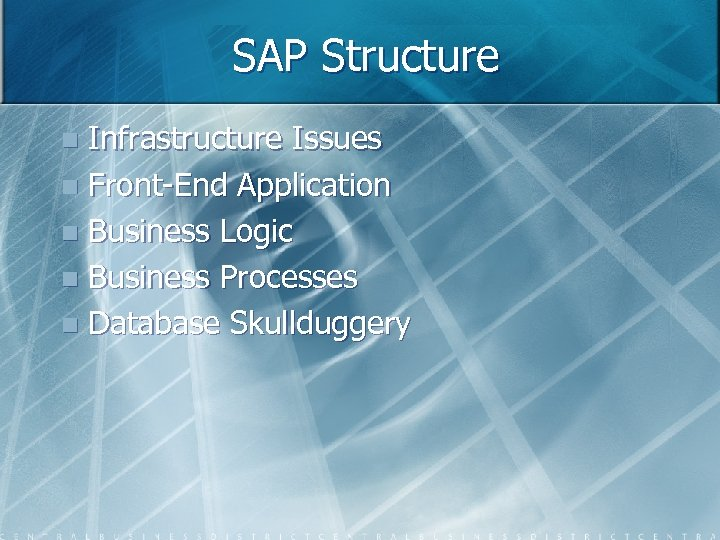 SAP Structure Infrastructure Issues n Front-End Application n Business Logic n Business Processes n