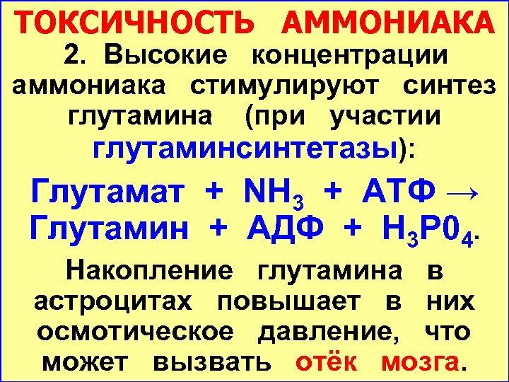 ТОКСИЧНОСТЬ АММОНИАКА 2. Высокие концентрации аммониака стимулируют синтез глутамина (при участии глутаминсинтетазы): Глутамат +