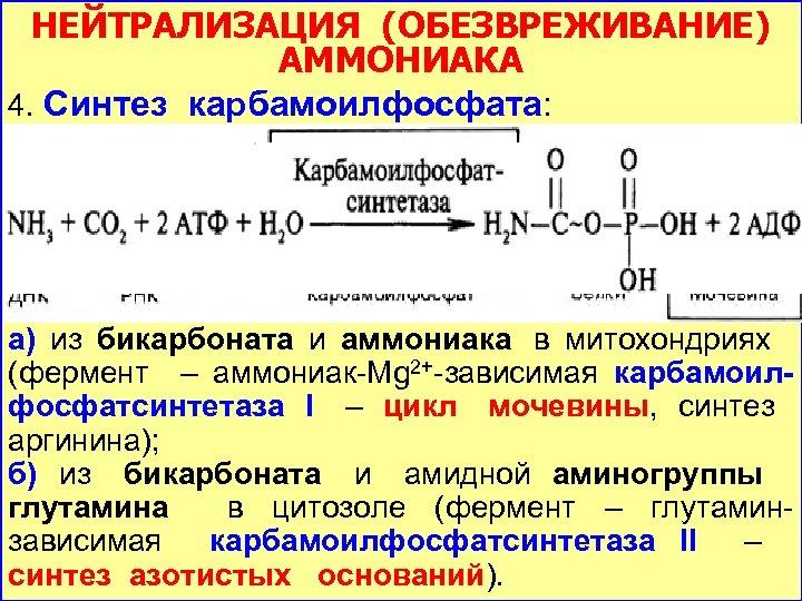 НЕЙТРАЛИЗАЦИЯ (ОБЕЗВРЕЖИВАНИЕ) АММОНИАКА 4. Синтез карбамоилфосфата: а) из бикарбоната и аммониака в митохондриях (фермент