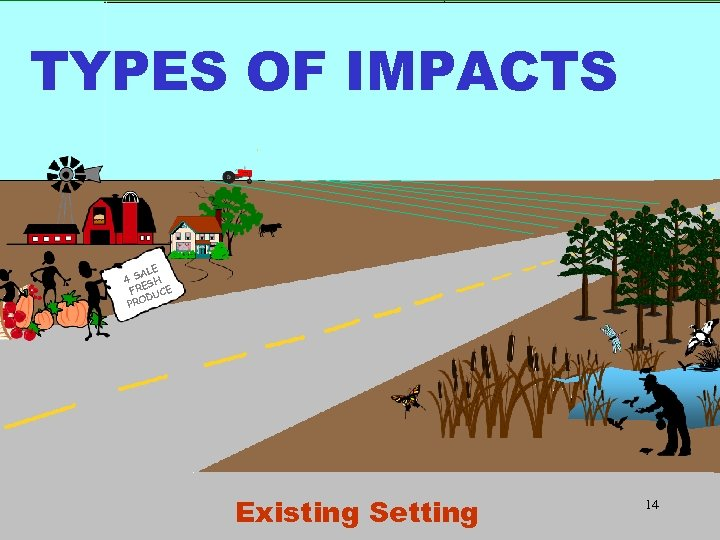 TYPES OF IMPACTS ALE 4 S SH FRE UCE D PRO Existing Setting 14