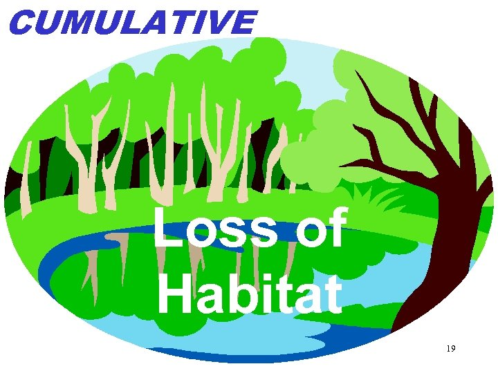 CUMULATIVE Loss of Habitat 19