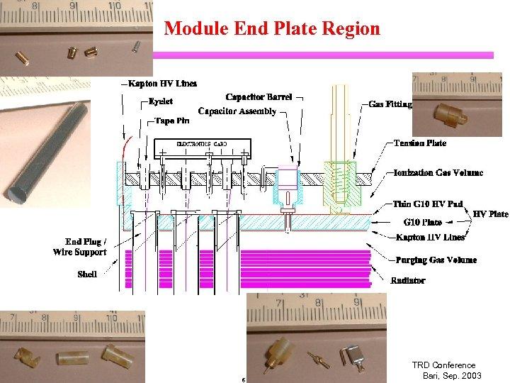 Module End Plate Region Chiho Wang Duke University 6 TRD Conference Bari, Sep. 2003