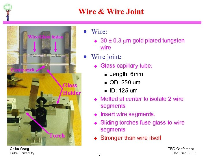 Wire & Wire Joint Wire/Glass fusion · Wire: 30 ± 0. 3 mm gold