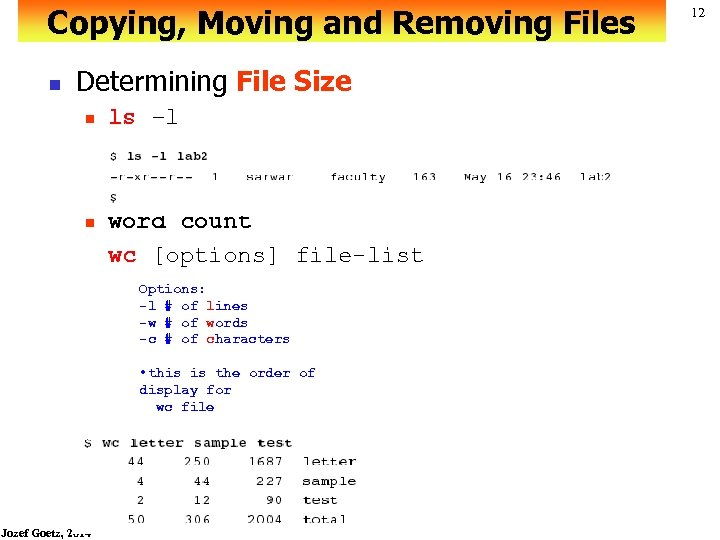 Copying, Moving and Removing Files n Determining File Size n n ls –l word