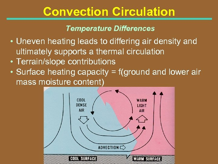 Convection Circulation Temperature Differences • Uneven heating leads to differing air density and ultimately