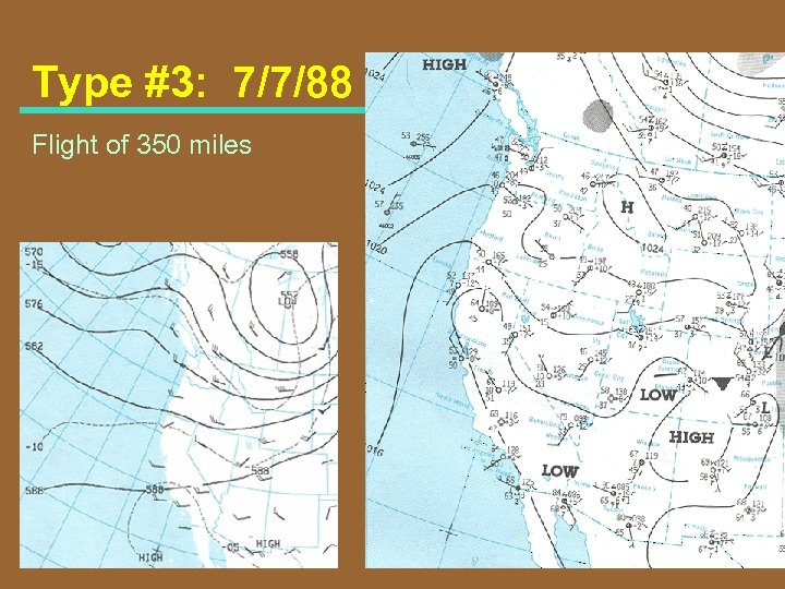 Type #3: 7/7/88 Flight of 350 miles