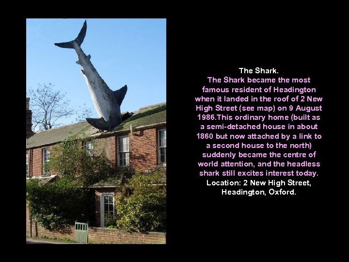 The Shark became the most famous resident of Headington when it landed in the