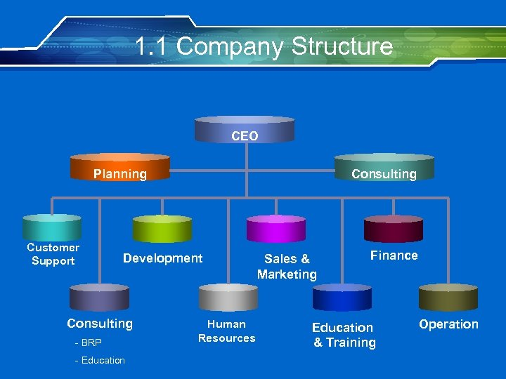 1. 1 Company Structure CEO Planning Customer Support Consulting Development Consulting - BRP -