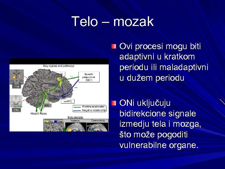 Telo – mozak Ovi procesi mogu biti adaptivni u kratkom periodu ili maladaptivni u