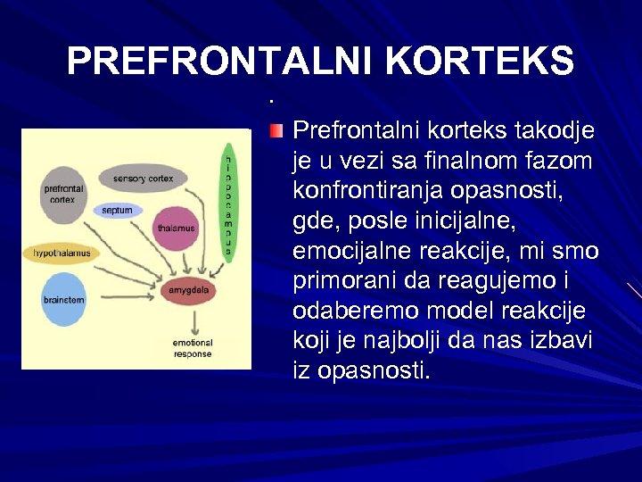 PREFRONTALNI KORTEKS. Prefrontalni korteks takodje je u vezi sa finalnom fazom konfrontiranja opasnosti, gde,