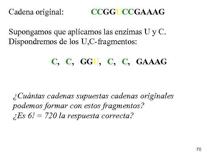 Cadena original: CCGGUCCGAAAG Supongamos que aplicamos las enzimas U y C. Dispondremos de los