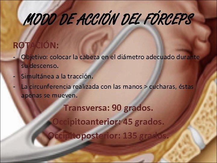 MODO DE ACCIÓN DEL FÓRCEPS ROTACIÓN: - Objetivo: colocar la cabeza en el diámetro
