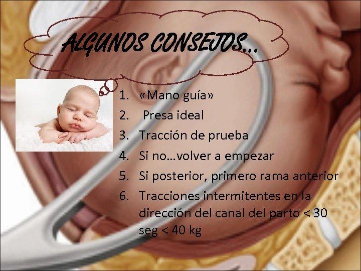 ALGUNOS CONSEJOS… 1. 2. 3. 4. 5. 6. «Mano guía» Presa ideal Tracción de