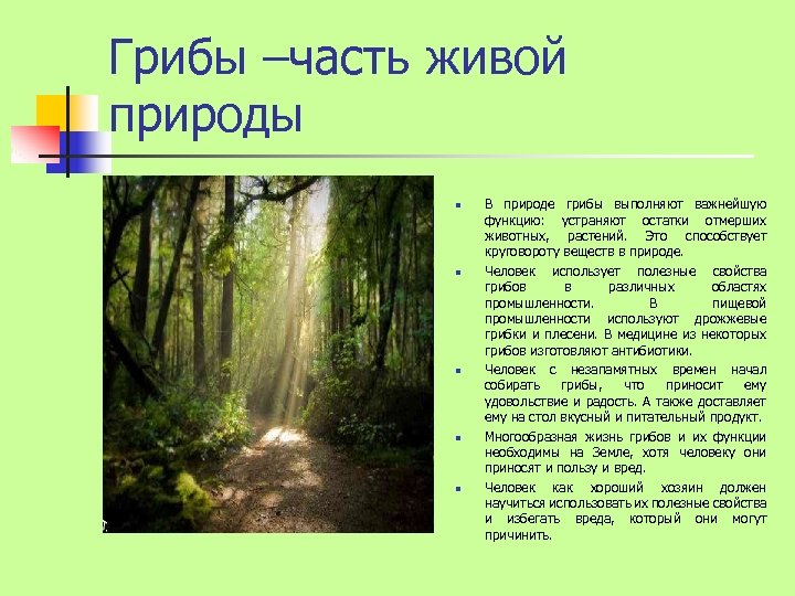 Грибы –часть живой природы n n n В природе грибы выполняют важнейшую функцию: устраняют