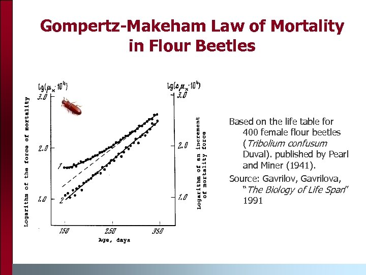 Gompertz-Makeham Law of Mortality in Flour Beetles Based on the life table for 400