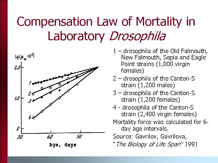 Compensation Law of Mortality in Laboratory Drosophila 1 – drosophila of the Old Falmouth,
