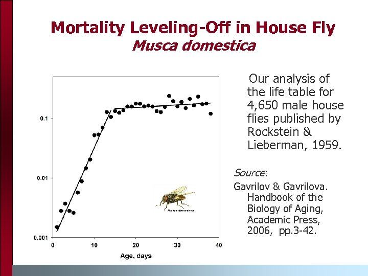 Mortality Leveling-Off in House Fly Musca domestica Our analysis of the life table for