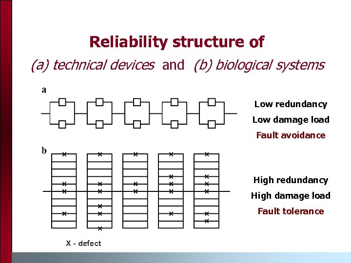 Reliability structure of (a) technical devices and (b) biological systems Low redundancy Low damage