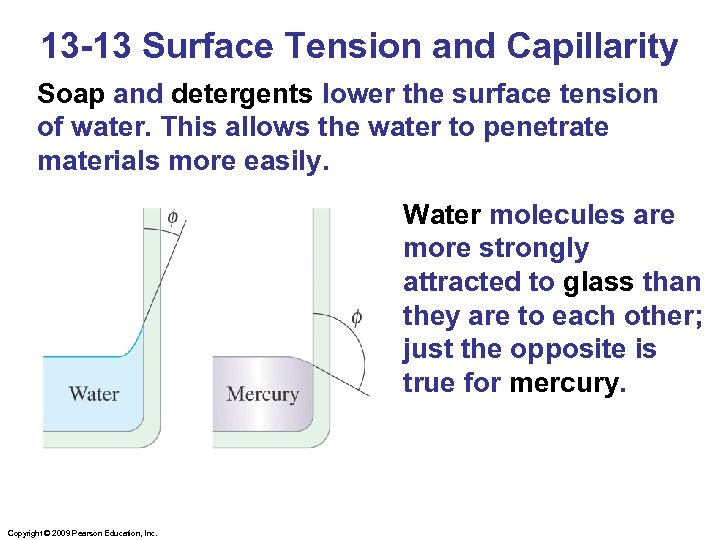 13 -13 Surface Tension and Capillarity Soap and detergents lower the surface tension of
