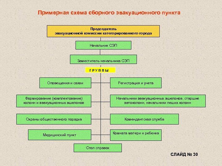 Примерная схема сборного эвакуационного пункта Председатель эвакуационной комиссии категорированного города Начальник СЭП Заместитель начальника