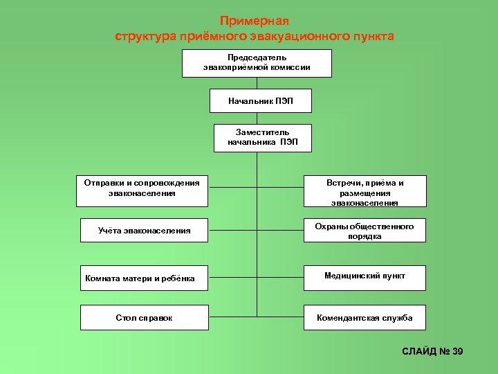 Примерная структура приёмного эвакуационного пункта Председатель эвакоприёмной комиссии Начальник ПЭП Заместитель начальника ПЭП Отправки