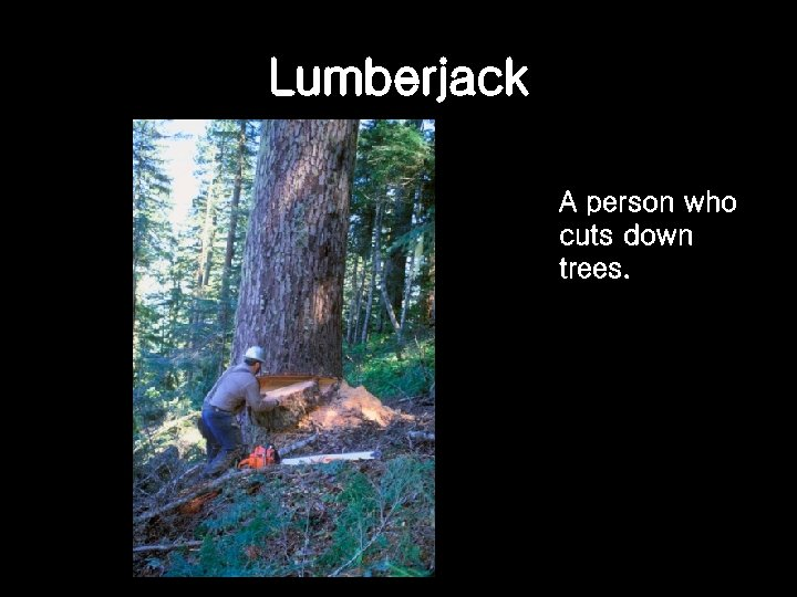 Lumberjack A person who cuts down trees.