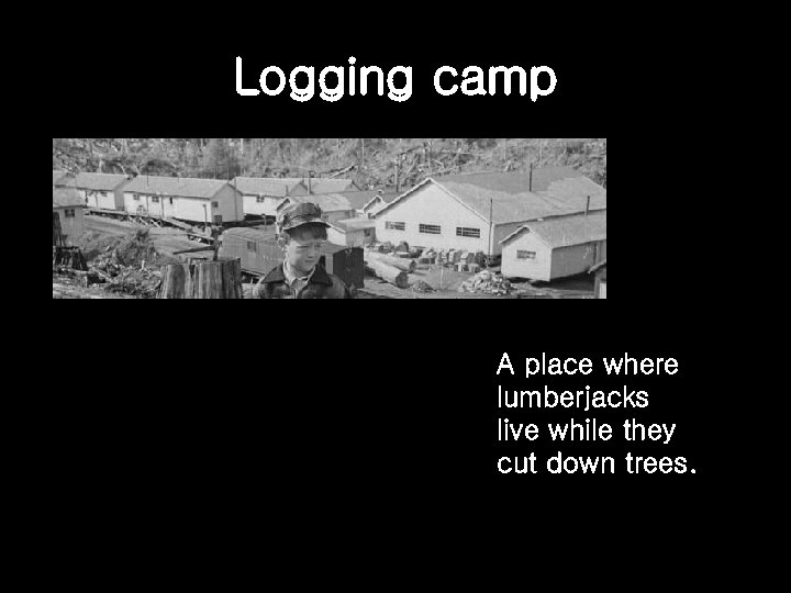 Logging camp A place where lumberjacks live while they cut down trees.