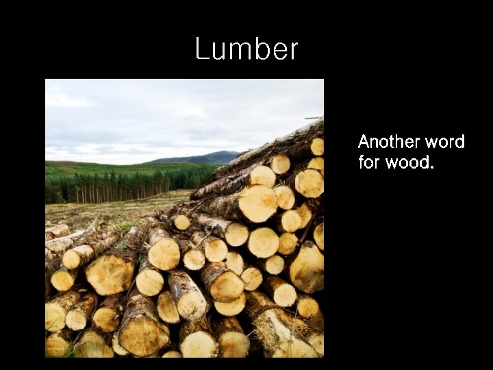 Lumber Another word for wood.