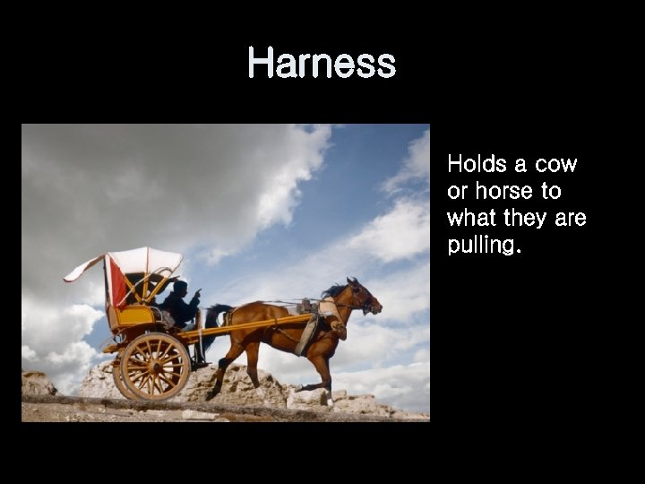 Harness Holds a cow or horse to what they are pulling.