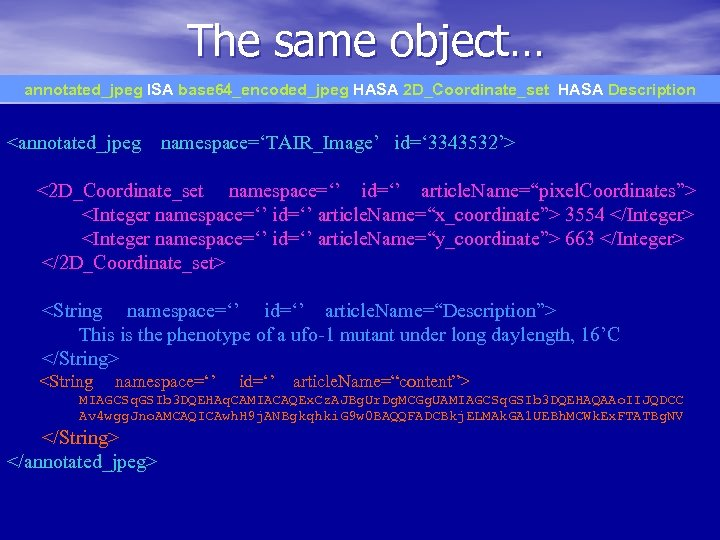 The same object… annotated_jpeg ISA base 64_encoded_jpeg HASA 2 D_Coordinate_set HASA Description <annotated_jpeg namespace='TAIR_Image'