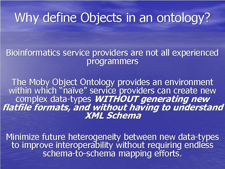 Why define Objects in an ontology? Bioinformatics service providers are not all experienced programmers