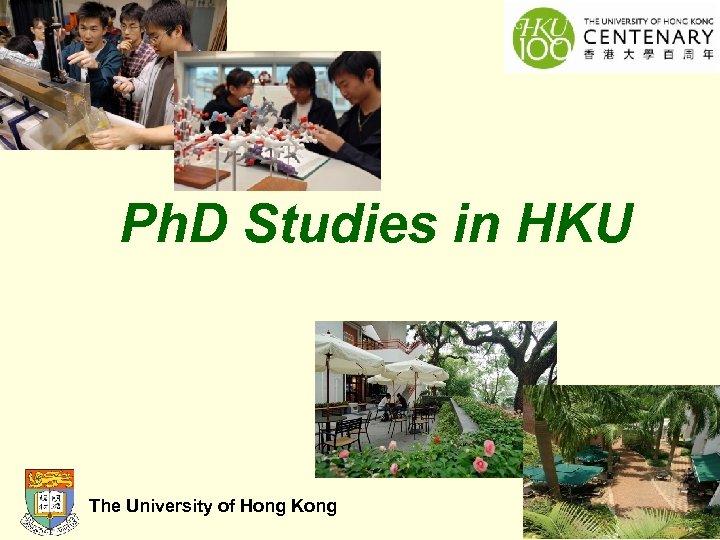 Ph. D Studies in HKU The University of Hong Kong