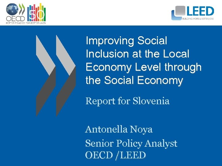 Improving Social Inclusion at the Local Economy Level through the Social Economy Report for