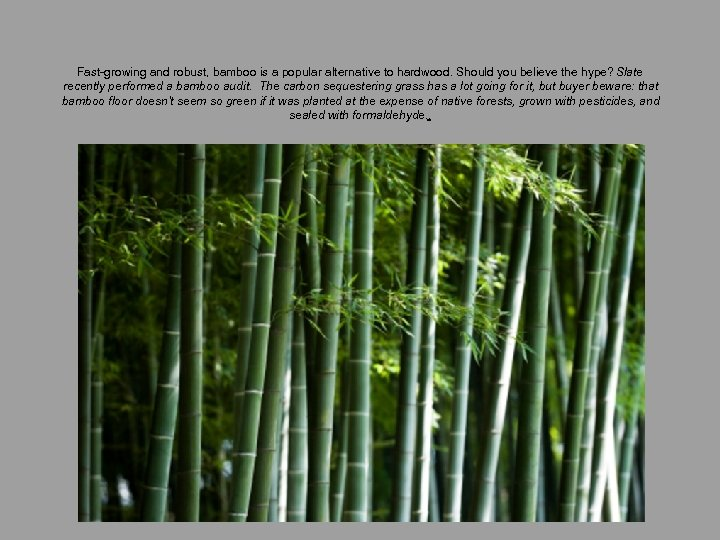 Fast-growing and robust, bamboo is a popular alternative to hardwood. Should you believe the