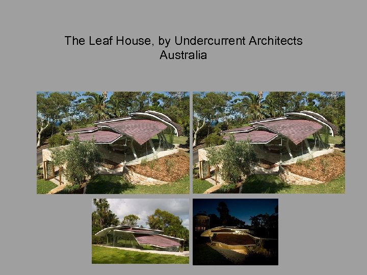 The Leaf House, by Undercurrent Architects Australia