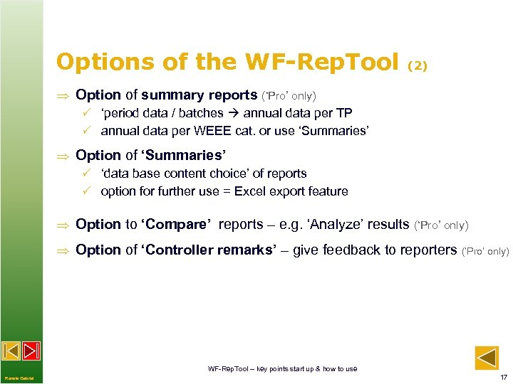 Options of the WF-Rep. Tool (2) Option of summary reports ('Pro' only) P 'period