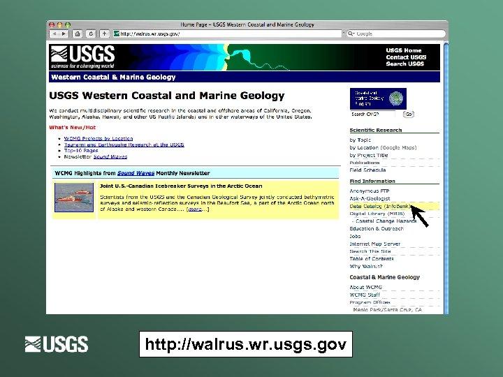 http: //walrus. wr. usgs. gov