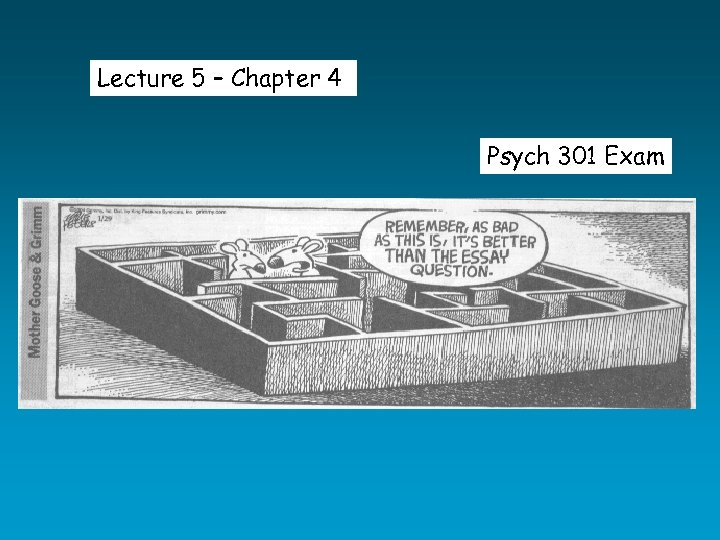 Lecture 5 – Chapter 4 Psych 301 Exam