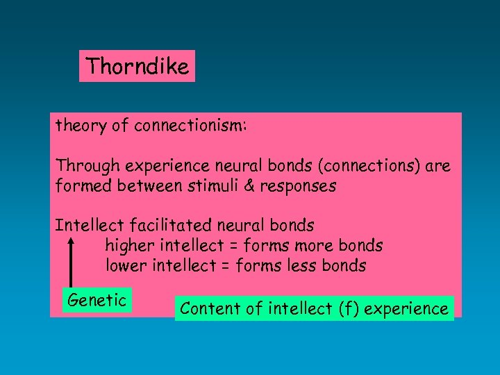 Thorndike theory of connectionism: Through experience neural bonds (connections) are formed between stimuli &