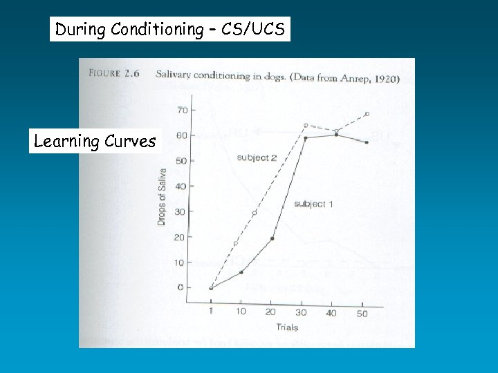 During Conditioning – CS/UCS Learning Curves