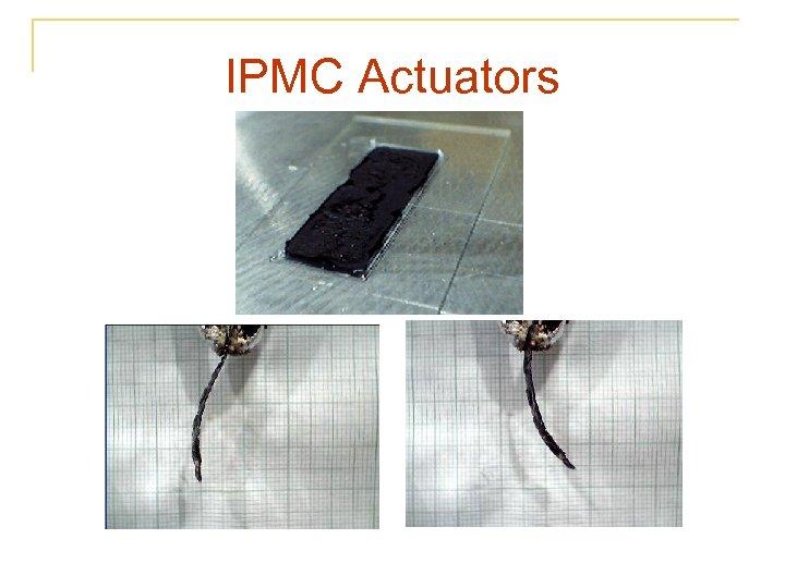 IPMC Actuators