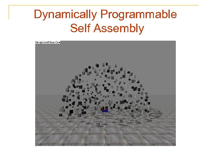 Dynamically Programmable Self Assembly