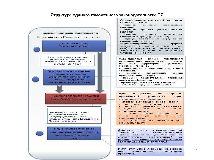 Структура единого таможенного законодательства ТС 7