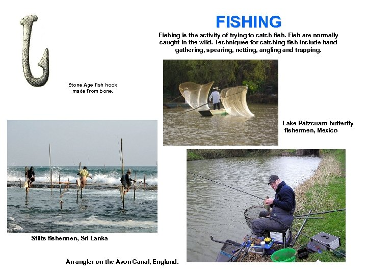 FISHING Fishing is the activity of trying to catch fish. Fish are normally caught