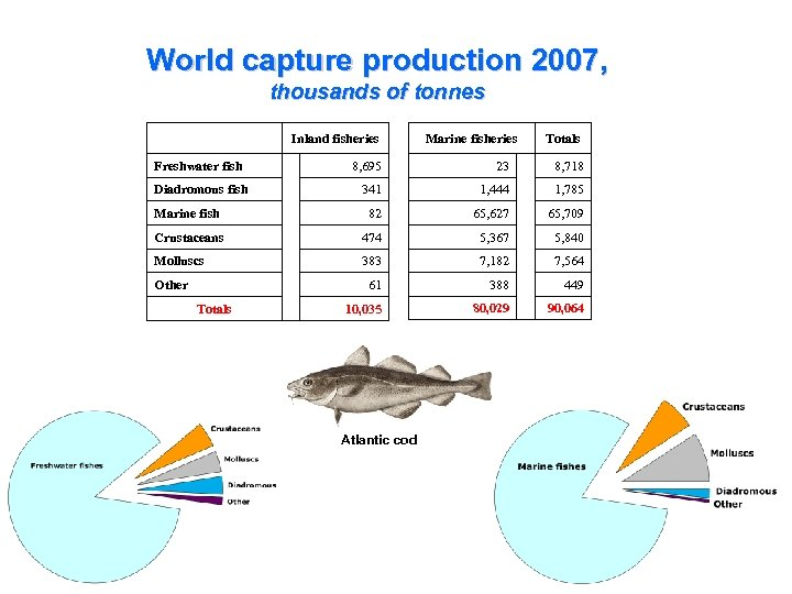 World capture production 2007, thousands of tonnes Inland fisheries Marine fisheries Totals 8, 695